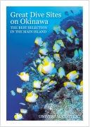 Great Dive Sites on Okinawa
